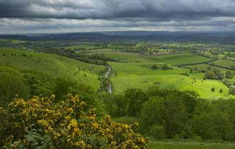 Fontmell and Melbury Downs