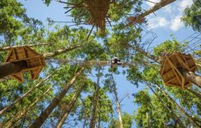 The Tunnel Tree Tops Ropes Course Dorset