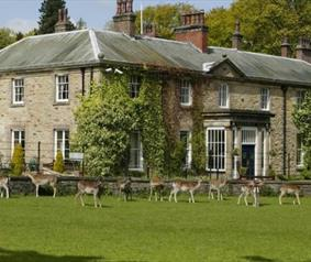 Group travel accommodation in Durham