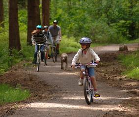 family bike ride at Hamsterley Forest