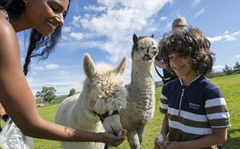 Escape the everyday in Durham, family at Adventure Valley