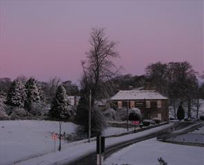 The Morritt in the the snow