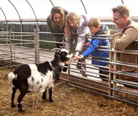 Family at Hall Hill Farm