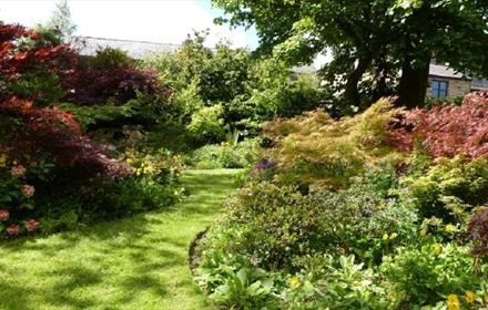 National Garden Scheme: Oliver Ford Garden. Image of a winding lawn in a lustrous, sunny garden .