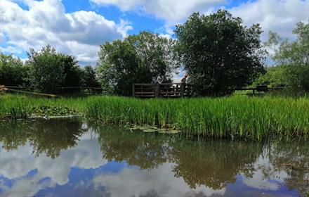 Aycliffe Nature Park