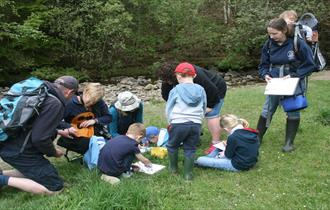 Discovery Club: Magnificent Meadows at Bowlees Visitor Centre. Families enjoying the countryside.