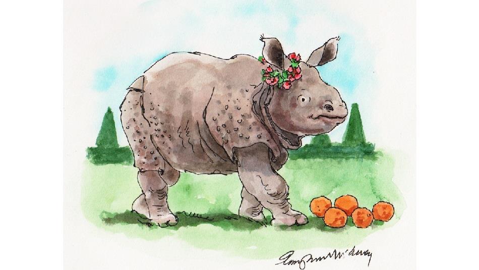 Clara the Rhinoceros Watercolour Image