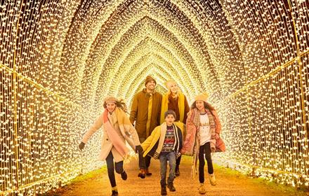 Family walking through tunnel of lights.  image named Cathedral of Light by Mandylights My Christmas Trails 2020