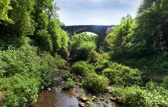 Causey Arch and Picnic Area