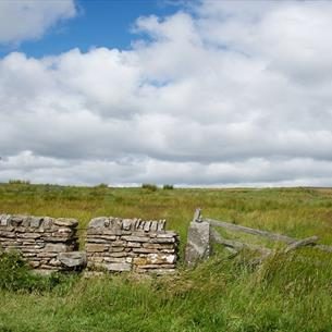 Durham Dales on a sunny day