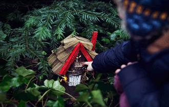 Woodland Fairy Trail at The Bowes Museum. Image of a Fairy House hidden in the trees.