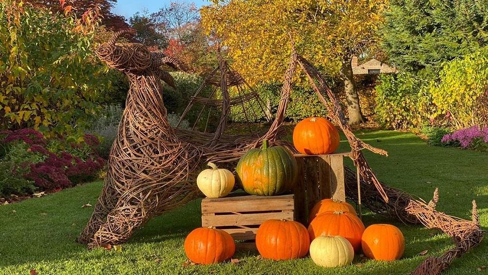 Wicker reindeer, orange and green pumpkins in grounds of Raby Castle