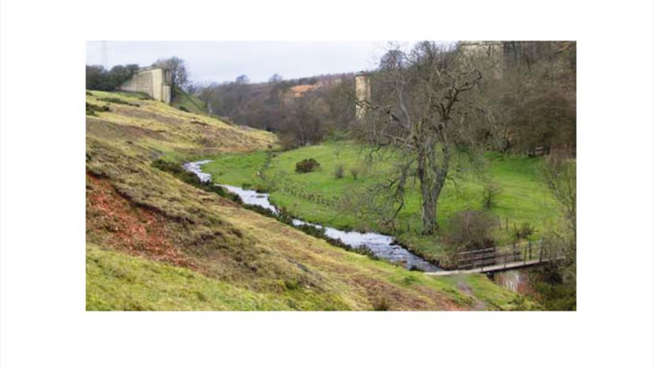 Cockfield Fell Heritage Walk
