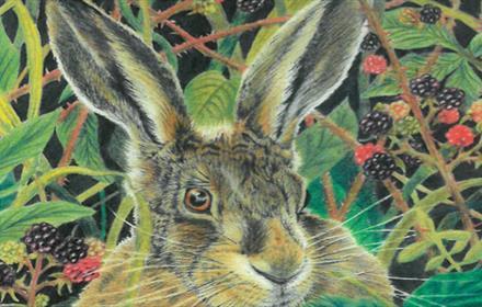 Portrait of a rabbit among brambles