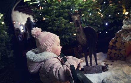 child in the enchanted forest at raby castle