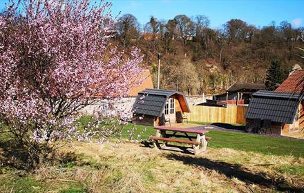 Finchale Abbey Camping Pods Durham