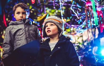 Two children in Forest of Light