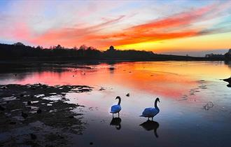 Hardwick Park at sunset
