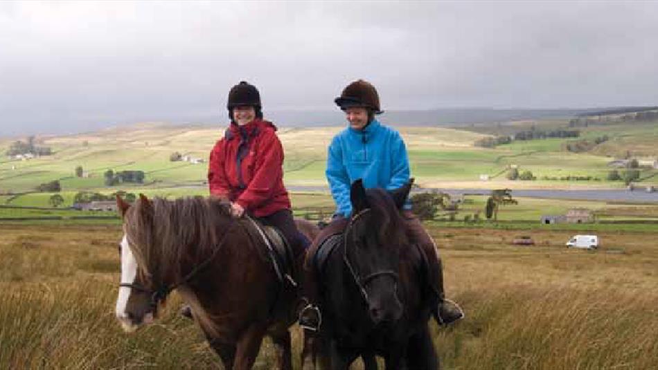 Horse Riding: Barnard Castle to Middleton-in-Teesdale: Taste Trail