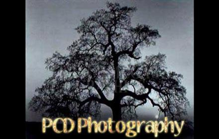 Paul Dobson Photography Logo