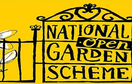 National Garden Scheme: Illustration of a gate and flowers against a yellow background
