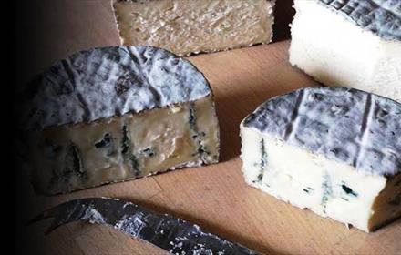 Teesdale Cheesemakers
