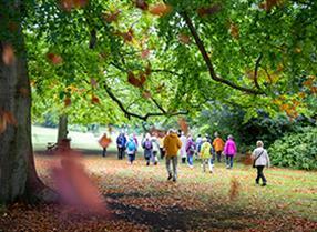 Thumbnail for Walking Festival