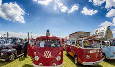 Beach Life Music Festival