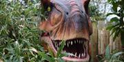 Jurassic Jungle at Drusillas Park