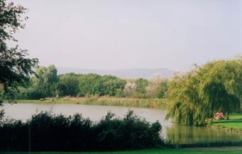 Shinewater Park