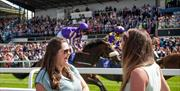 Full stands and two horses and jockeys passing onlookers at Beverley Racecourse in East Yorkshire.