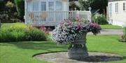 Flowers and a grassed area in front of a caravan at Patrington Haven in East Yorkshire.