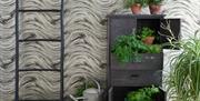 Clarke Botanica Black Wave  wallpaper at   Vivienne Rose Interiors shop, in East Yorkshire