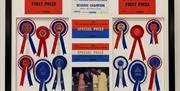 An image of championship rosettes, framed at Ford Framing, Beverley