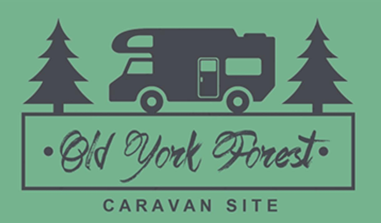 An image of the Old York Forest Campsite logo