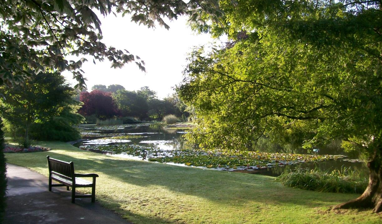 A shady area around the pond at Burnby Hall and Gardens in East Yorkshire.