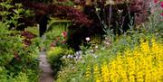A narrow path leading through the gardens at Saltmarshe Hall, Goole in East Yorkshire.