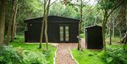A glamping hut in a woodland glade at North Star Club in East Yorkshire.
