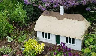 Image of Model House set in purple flowers.