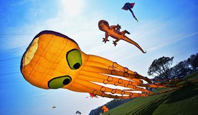 Kites flying at Bridlington Kite Festival, Sewerby Fields, Bridlington, East Yorkshire