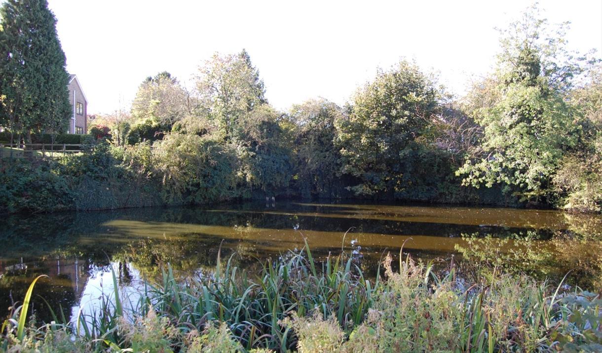 The pond at Cherry Burton village in East Yorkshire.