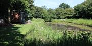 A pond and grass area at Little Otchan Shepherds Hut in East Yorkshire.
