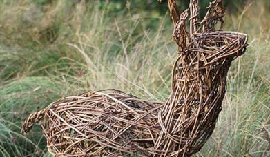 Willow Deer Workshop