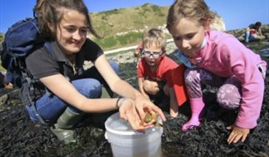 A family exploring rockpools at Flamborough South Landing