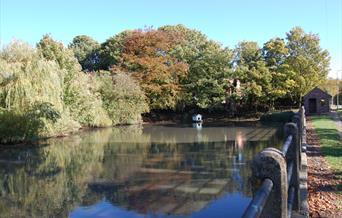 Wetwang village pond in East Yorkshire.