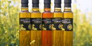 A range of oils available at Yorkshire Rapeseed Oil, Malton, North Yorkshire (Online Shop)