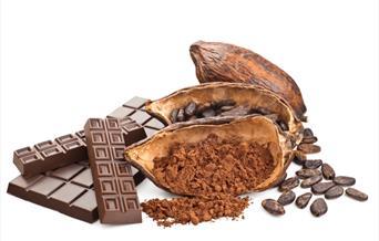 Chocolate exhibition