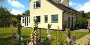 The garden at Coastguard Cottage, Sunk Island, East Yorkshire.
