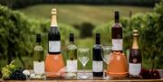 The range of wines produced at Little Wold Vineyard, Brough, East Yorkshire, displayed with the vineyards as the backdrop.