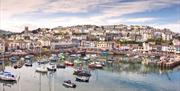 Brixham harbour, Brixham, Devon